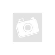 LOTUS Plastic Cleaner Műszerfal és műanyag tisztító 600 ml