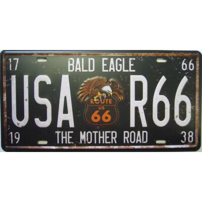 Retro fémtábla kép Bald Eagle USA 3D dombornyomású