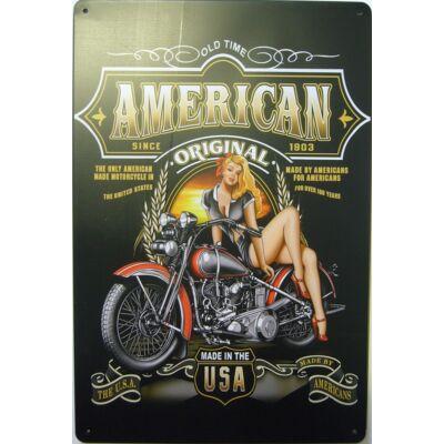 Retro fémtábla kép American