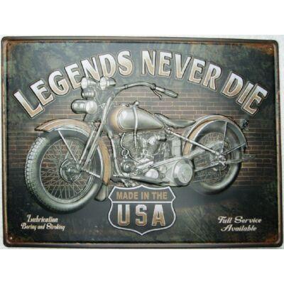 Retro fémtábla kép Legends Never 40x30 3D dombornyomott