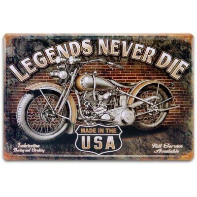 Retro fémtábla 40x30 kép Legends Never 3D