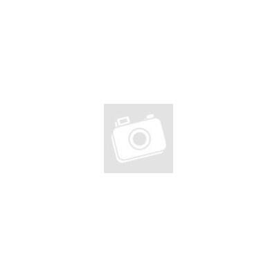 Fényképtartó 10x15 ezüstszínű fém íves