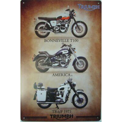 Retro fémtábla 20x30 kép Triumph