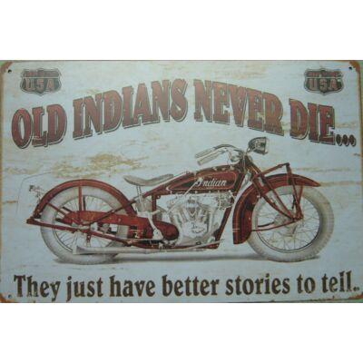 Retro fémtábla 30x20 kép Old indian