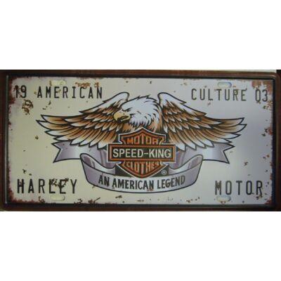 Retro fémtábla 30x15 kép American Culture 3D dombornyomású