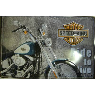 Retro fémtábla 30x20 kép speed king Ride To Live kék-szürke 3D