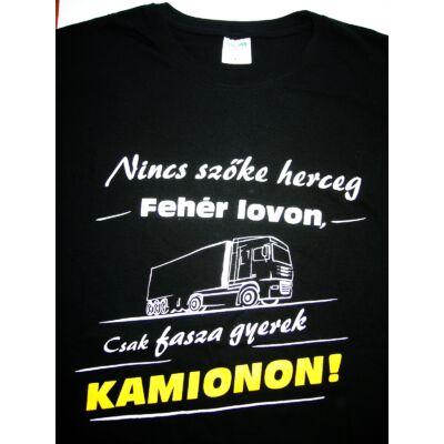 84e843db91 Póló Nincsen szőke herceg kamionon L - Vicces póló